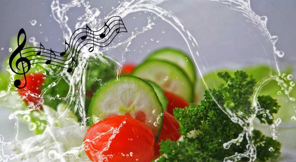 TCM: Musik in der Küche - Nahrung durch Musik verfeinern