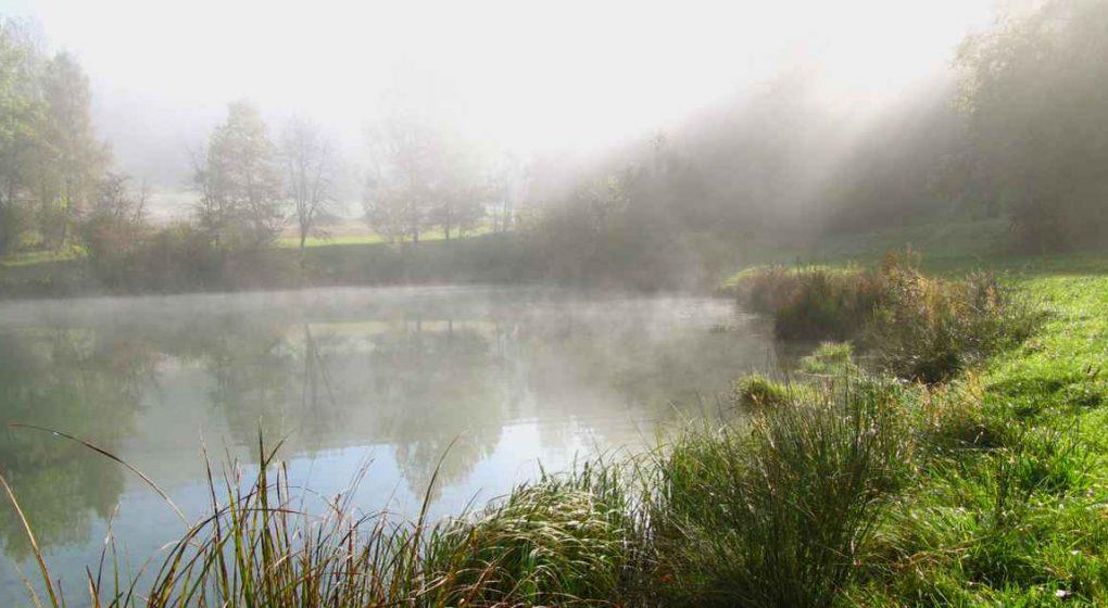 Der Weisheit Mutter Natur lauschen – schamanischer Weg
