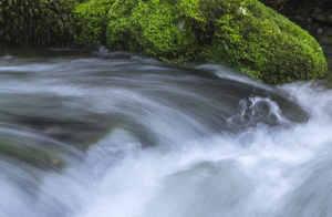 Wasser wie in der Natur - Ausseer Wassermann Wasserbelebung